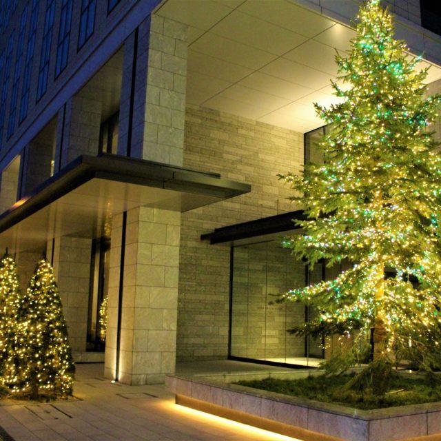 京王プレリアホテル札幌で初めてのイルミネーション装飾を実施いたします!